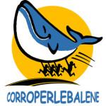 corroperlebalene-pista-290x300